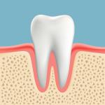 高齢者の歯周病 健康な状態